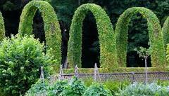 Une escapade dans un jardin romantique: