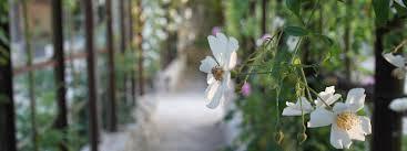 Escapades aux jardins