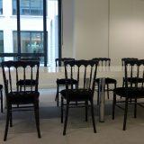 La chaise Napoléon 3, so trendy !