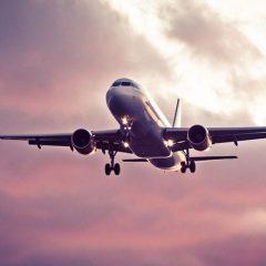Organisez vos prochaines vacances en Martinique
