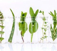 Comment se soigner avec les huiles essentielles ?
